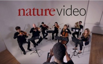 nature epigenome the symphony in your cells